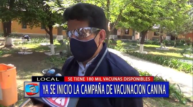 Inicia campaña de vacunación canina en Tarija