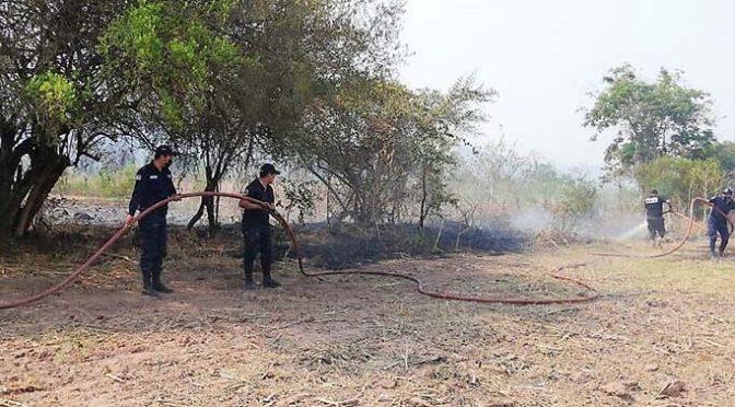 Reacción inmediata permite sofocación de incendio en la zona San Isidro