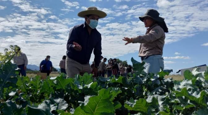Tecnológico amplía la inscripción para Agropecuaria hasta el 7 de junio