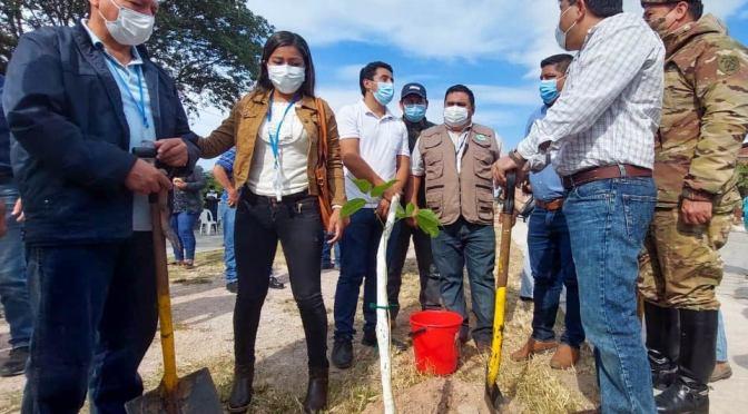 Tres barrios de Yacuiba serán reforestados con 150 plantines