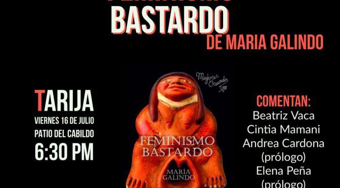 Hoy a las 18:00 en el Patio del Cabildo se presentará el libro Feminismo Bastardo