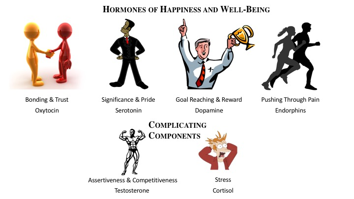 HormonesofHappiness1