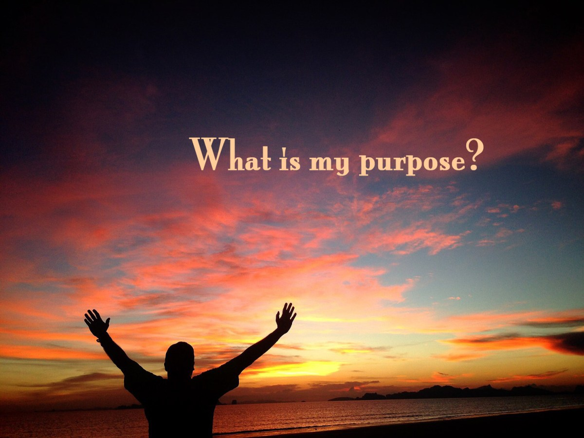 Have You Written Your Personal Purpose Statement?