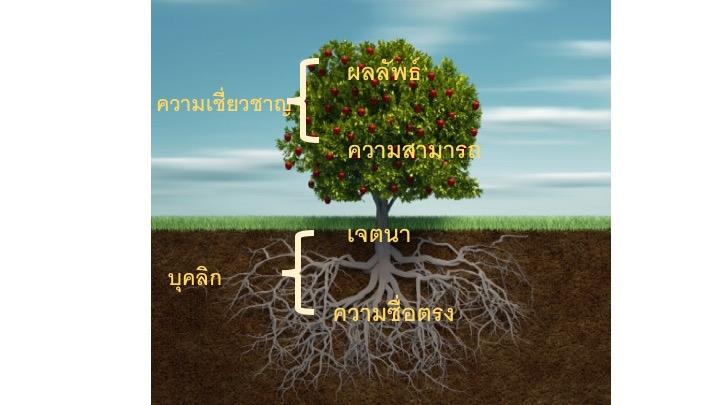 TreeIllustrationThai