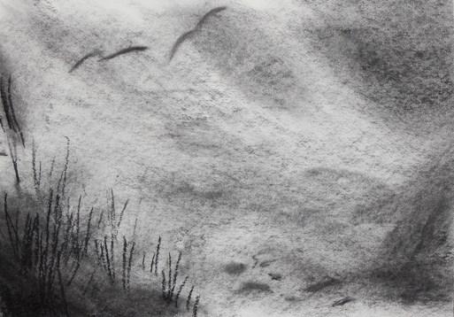 Woeste duinen