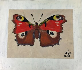 vlinder-2