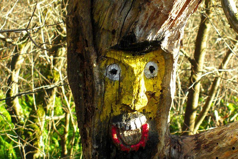 Kunst oder Schrumpfkopt: Maske in den Baumstamm geschitzt