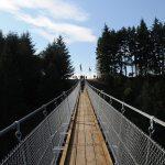 Hier steht ein Bild mit dem Titel: Das Sosberger Ende der Brücke (Foto: Britta Verhaag)