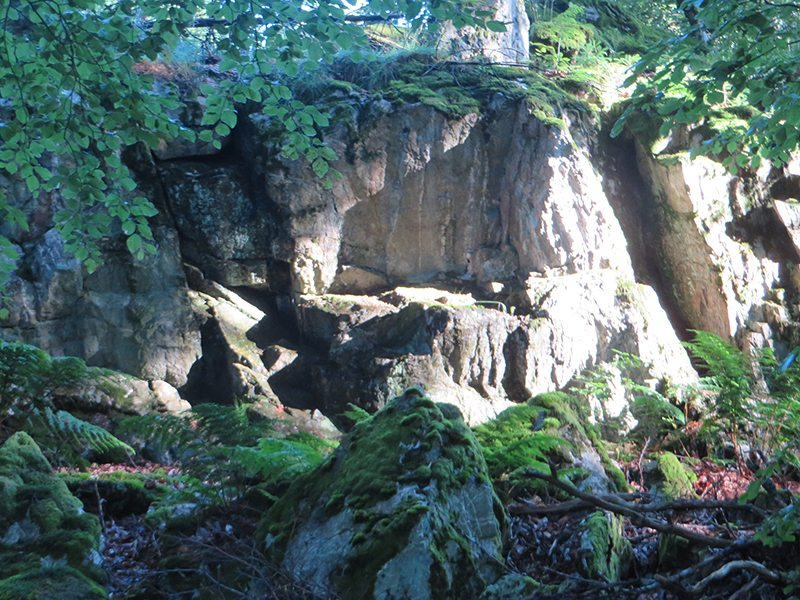 Erinnern mich an meine Kindheit, die Klippen aus Taunusquarzit auf dem Wildenburger Kopf (Foto: Hans-Joachim Schneider)