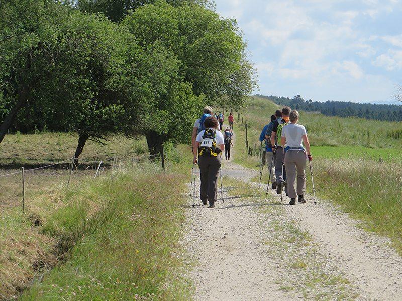 Immer wieder vor mir: das Quartett mit den Nordic Walking Sticks (Foto: Hans-Joachim Schneider)