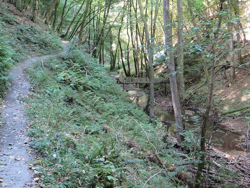 Mal auf schmalem Steig, mal auf breiterem Weg, nur nie langweilig ist die Tour durch das Endert-Tal (Foto: Hans-Joachim Schneider)