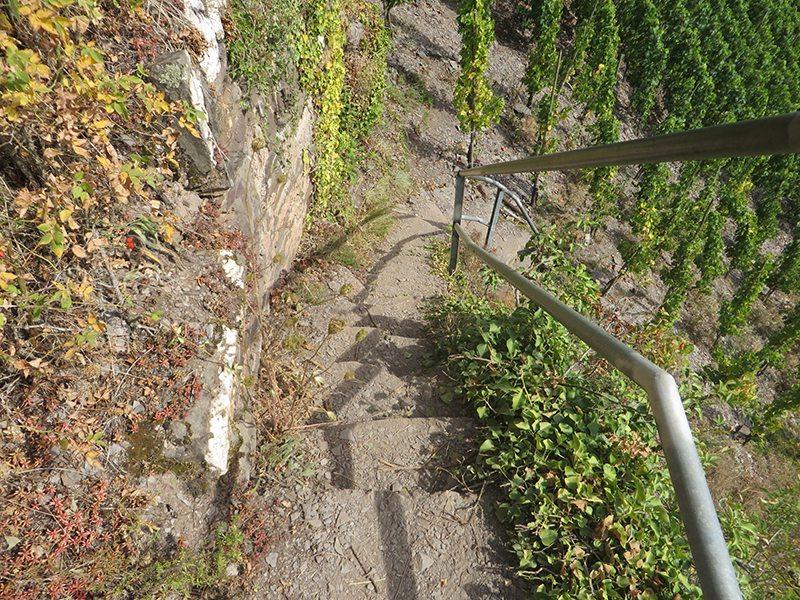 Weinberg, Weinbergtreppe, Abstieg, Geländer, Sonne, Schatten