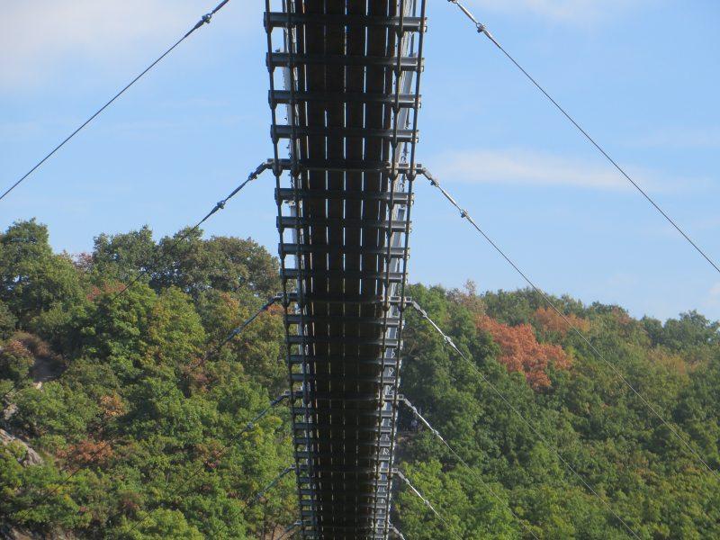 Die Hängeseilbrücke – Sicht von unten auf die Geierlay-Brücke