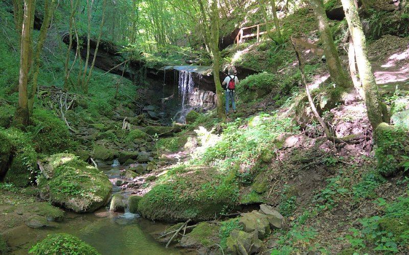 Vor Kurzen war der Römerpfad durch das Butzerbachtal noch wegen Hochwasserschäden gesperrt.