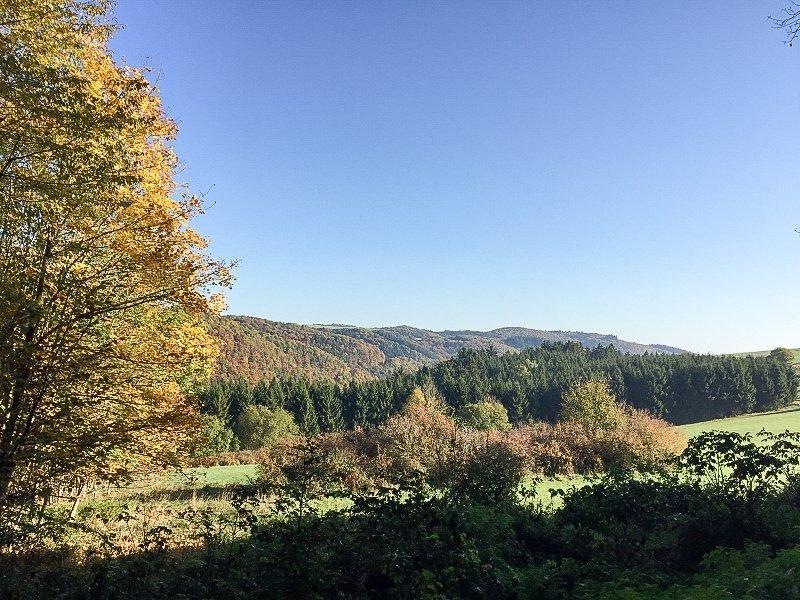 Sonne, blauer Himmel, Herbst, Tal, Wiese und buntgefärbte Bäume am Ahrsteig blau