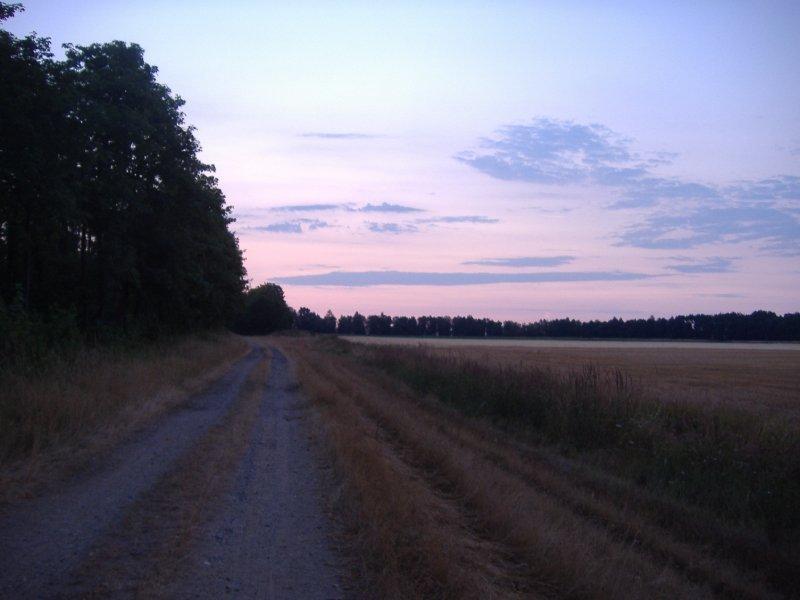 Dunkel, Sonnenaufgang, Glessener Höhe, Himmel, Wald, Feld, Bäume