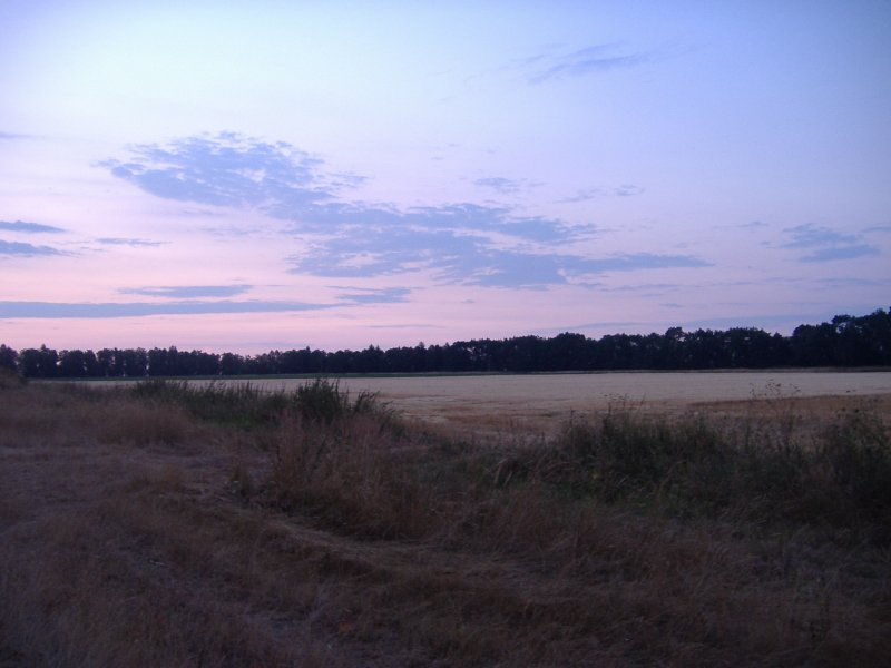 Sonnenaufgang, Felder, Acker, Horizont