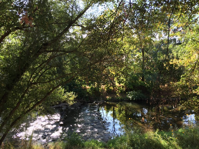 Ahrtal und Ahr-Ufer, das sollte man bei Morgenlicht erleben