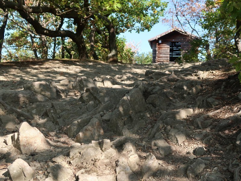 Der Pfad zur Schrockhütte ist ausgetreten, Kalkschiefer bildet Stolperfallen
