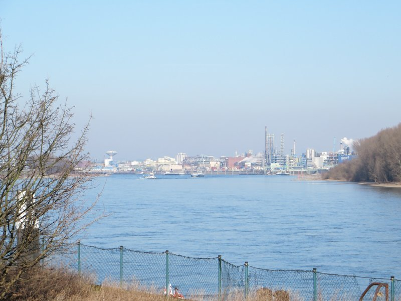 Blick über den Rhein im Vordergrund, dahinter Industrieanlagen