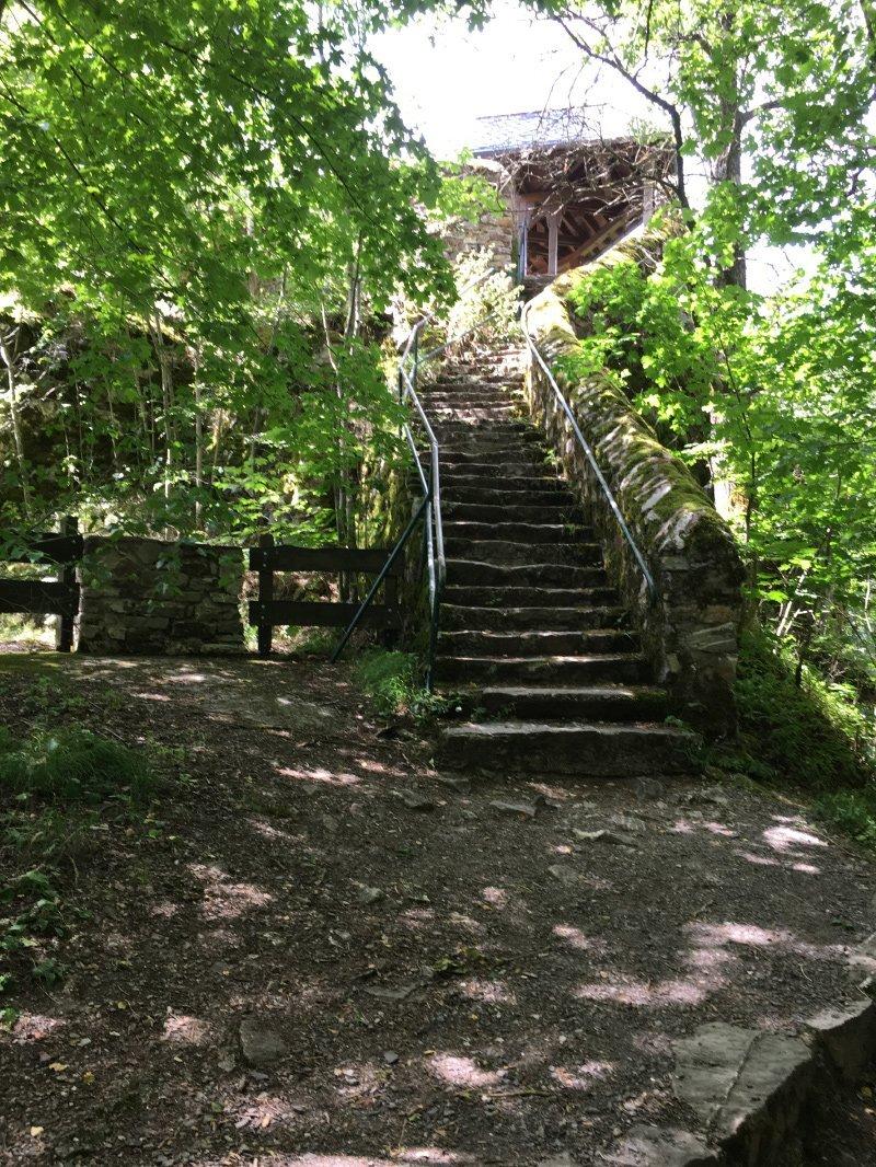 Eine steinerne Felsentreppe unter lichtem Grün führt zum Aussichtsturm auf der Wildenburg