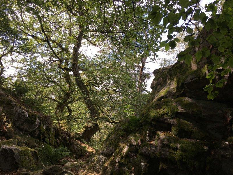 Ein Einschnitt in den Felsen, eine gute Gelegenheit für uns Kletterer in die Mauer einzusteigen