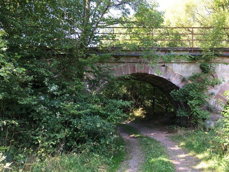 Altes Eisenbahnviadukt unter grünen Bäumen, darunter führt der Nahesteig hindurch
