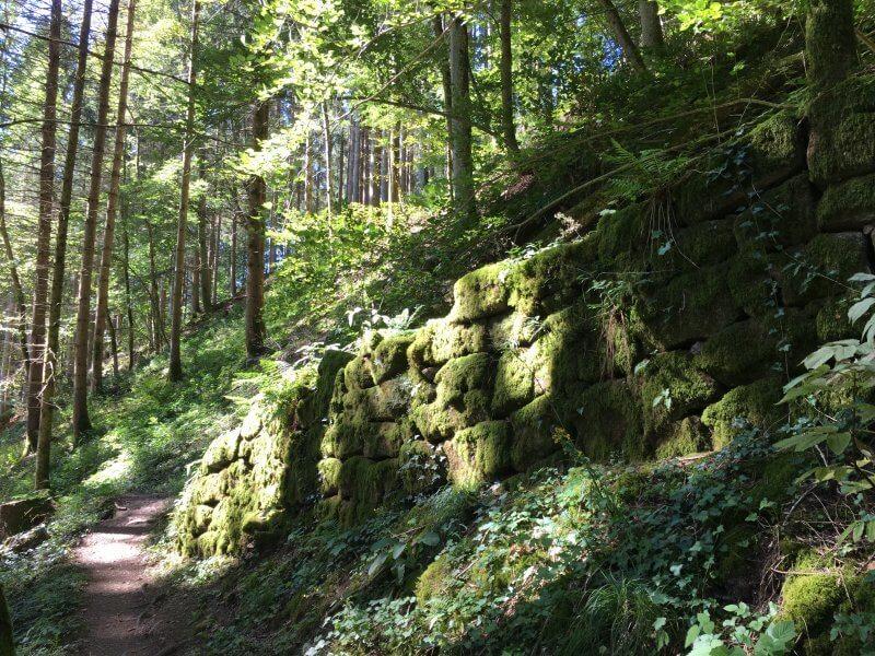 grünbemooste Steinmauern mitten im Wald am Rande des Himmelssteigs