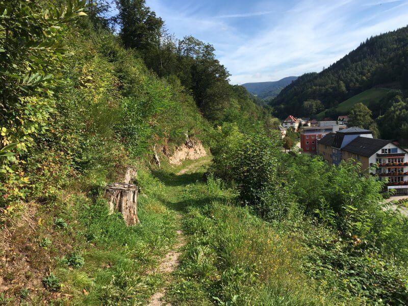 Wanderweg Schwarzwaldsteig am offenen Hang, links sind die Gebäude von Bad Peterstal zu erkennen.