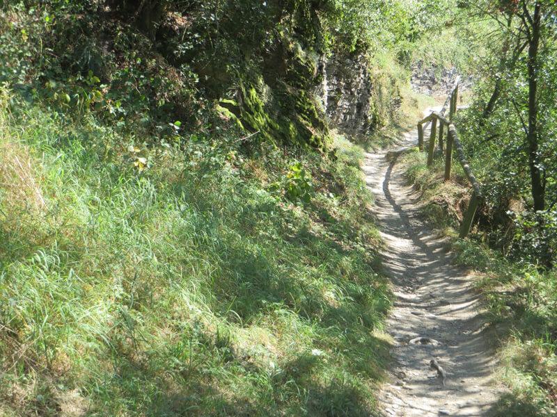 Ein holpriger Pfad, auf der rechten Seite gesichert durch ein Geländer, linker Hand grünes Gras ein paar Felsen. Die Sonne wirft Schatten über den Weg.