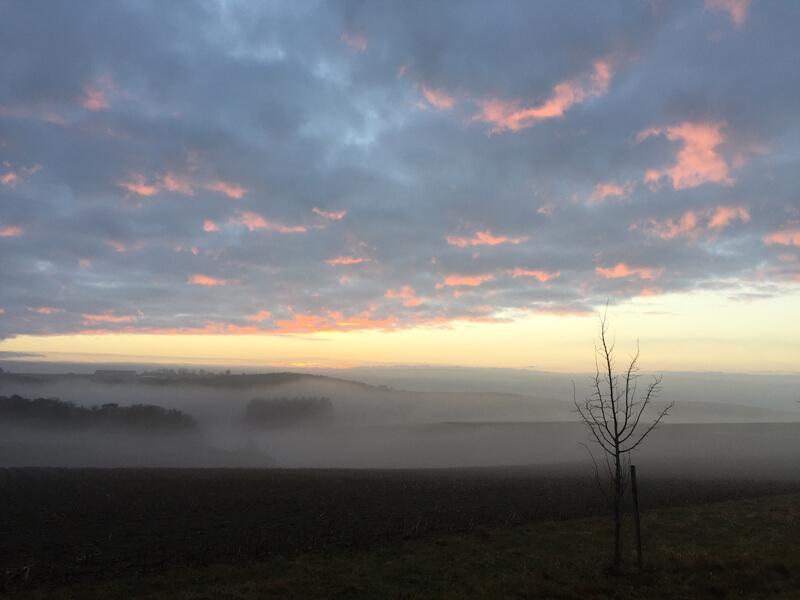 Frühnebel im Tal, am Himmel zartrosa Wolkenfetzen