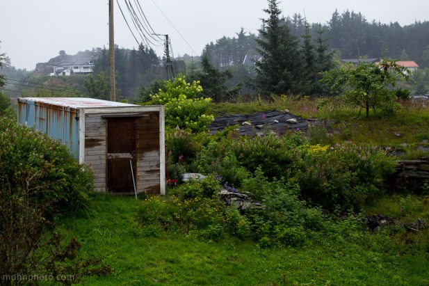 I thought it was a dumped container(garden toolshed)
