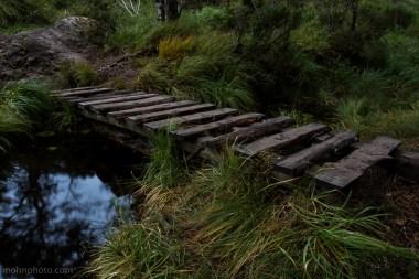 A Bridge Equals Not Muddy Shoes