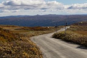 Road to Prestholt