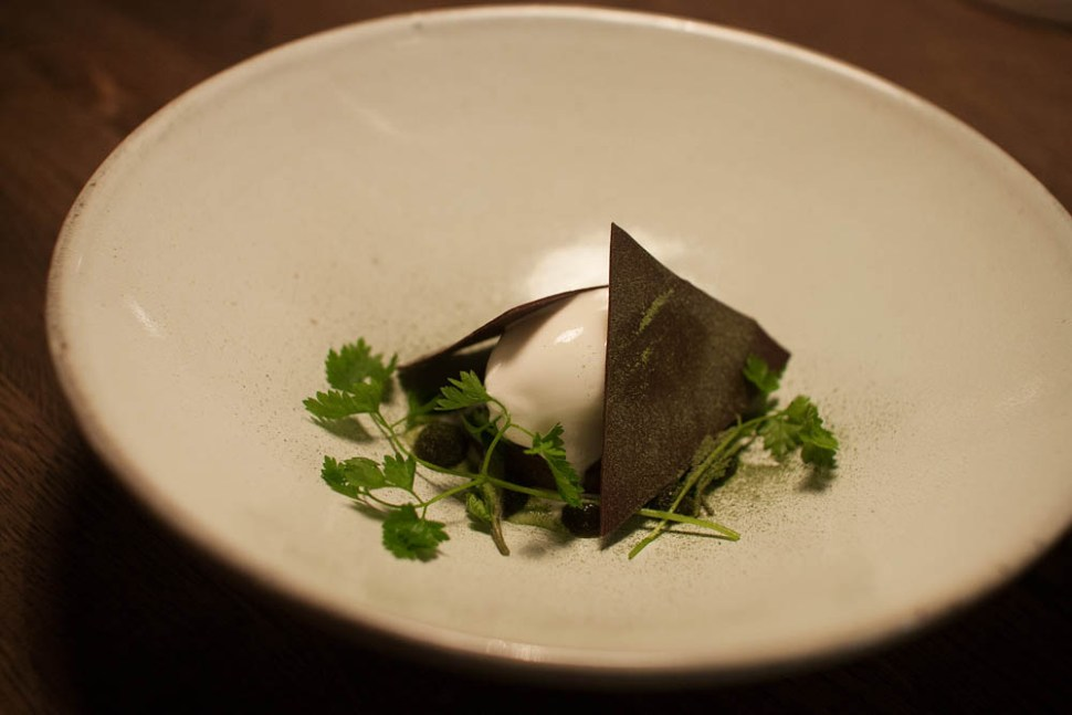 Sorbet of goat's milk yogurt, salty caramel, organic chocolate, fresh chervil, and chervil dust. The caramel was very tasty, but the sorbet was a bit bland. The chocolate didn't really add anything to the dish. The chervil, however, was interesting. Weird, but good!