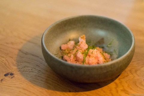 A very odd granita of salty rhubarb