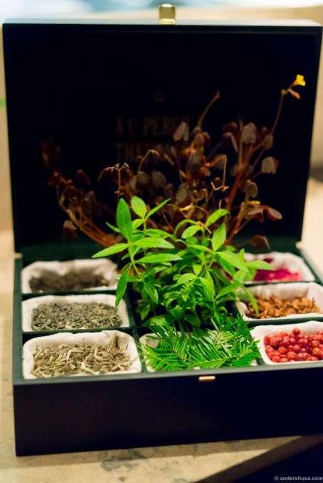 The tea selection at Studio