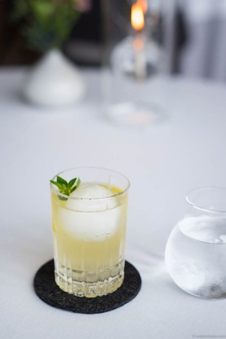Geranium Gin & Tonic with sea buckthorn & lemon verbena