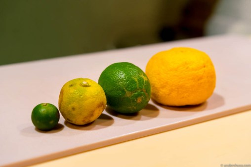 Showcasing different citrus fruits, from sudachi to lime & yuzu
