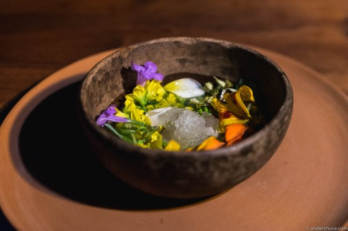 Cold masa and mussel broth, habanero oil, local limes, and all the flowers at the moment. Granita of local berries.