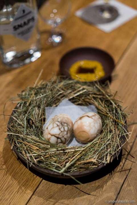 """Black sun"" – pickled egg southern Jutland-style"