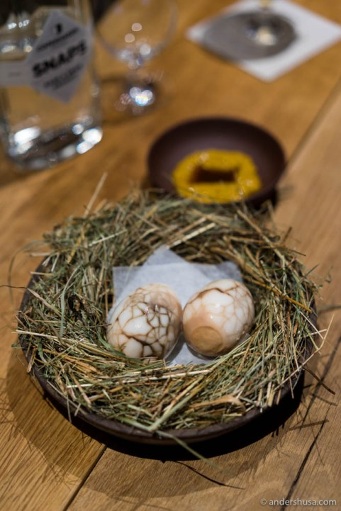 """Black sun"" – pickled egg southern Jutland-style"