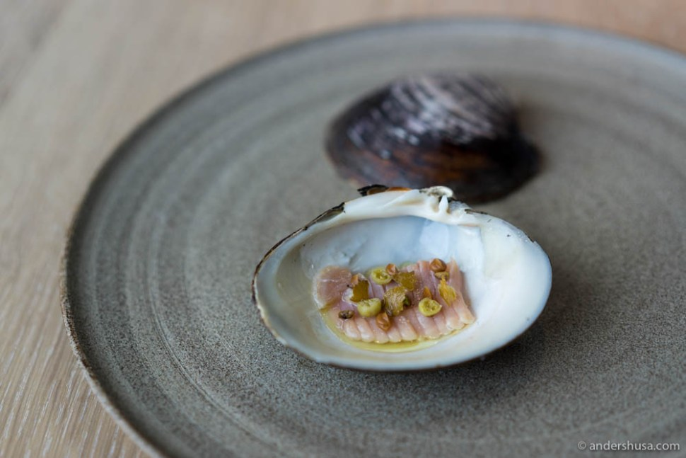 Raw, sliced Mahogany clam with salted gooseberries, salted white currants, kelp and mussels broth.