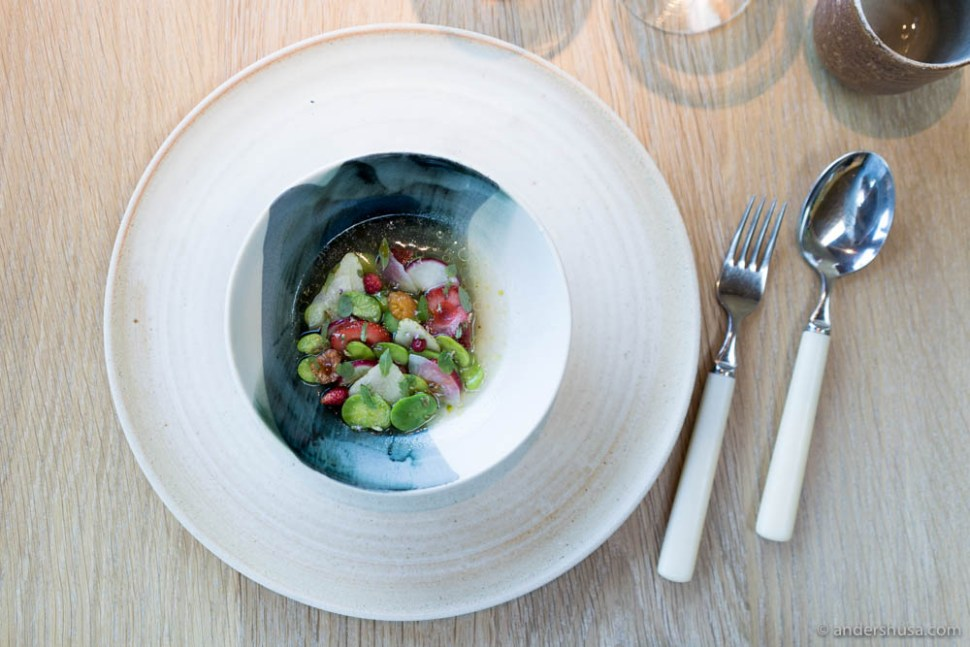 Strawberry 'ceviche': fruit and vegetables of the season (red / green strawberries, wild strawberries, fava beans, marinated turnips, dried tomatoes, plums with different seeds and shoots