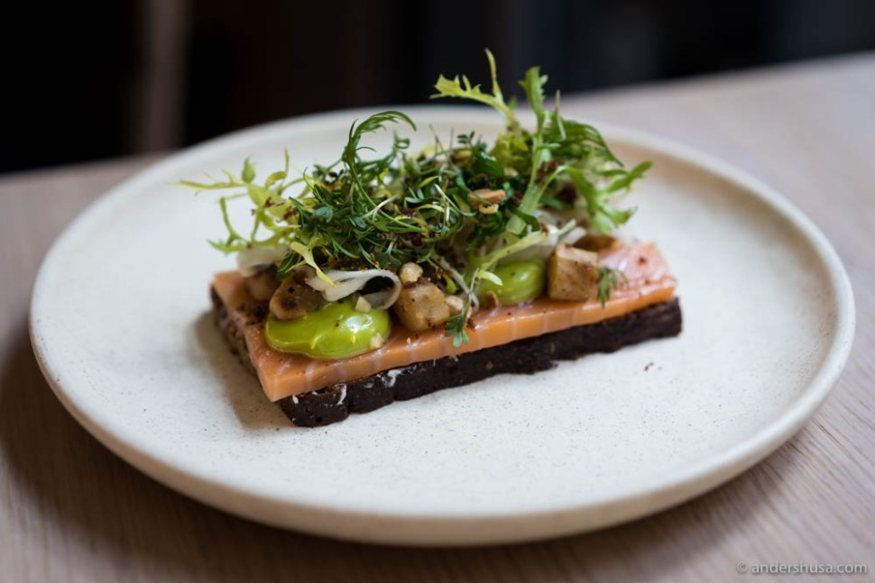 Cold smoked salmon from Iceland with dill and cress mayo, salsify, roasted almonds and rye crumbs