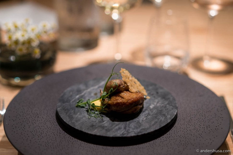 Quail from Tysvær, hiding a ceps risotto, peas & ceps Hollandaise underneath the lid