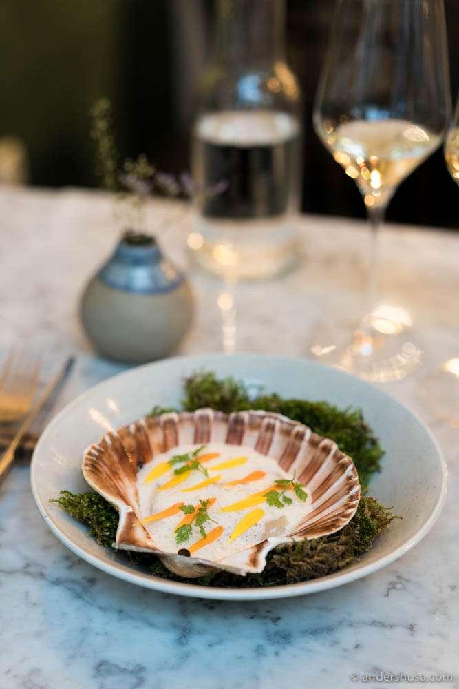 Norwegian scallops, beurre blanc foam & marigold