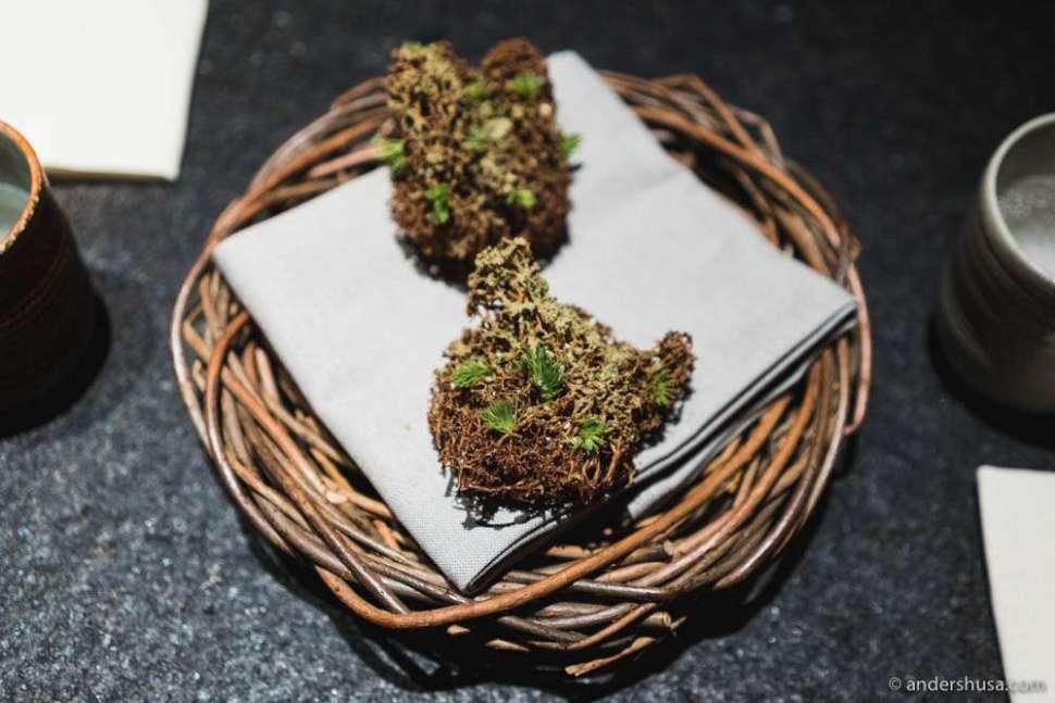 Chocolate-covered reindeer moss