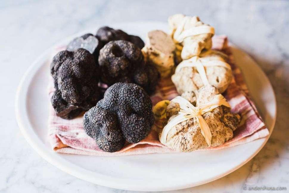 Black Périgord winter truffle and white Alba truffle