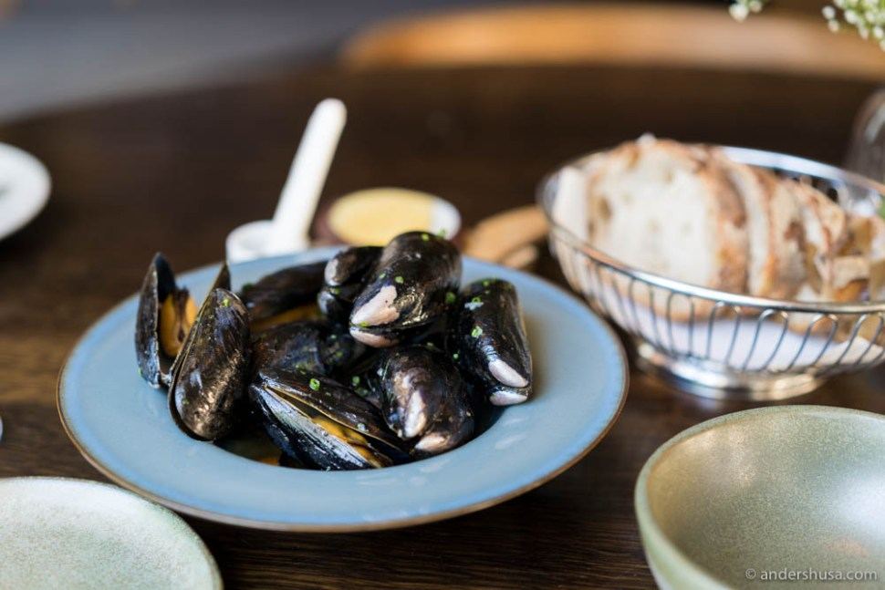 Grilled mussels with XO vinaigrette